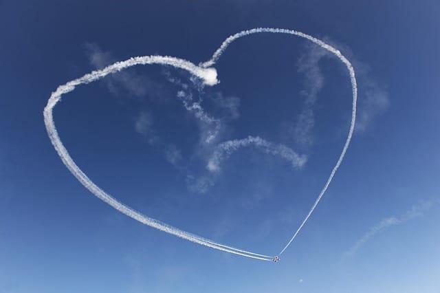 find-love-flight